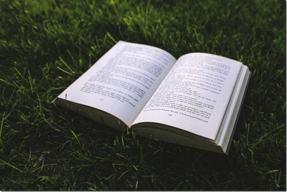 【關於寫作,你所不知道的二三事】六、該怎麼看待這些寫作教學?
